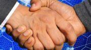 Преимущества и недостатки франшиз госзакупок
